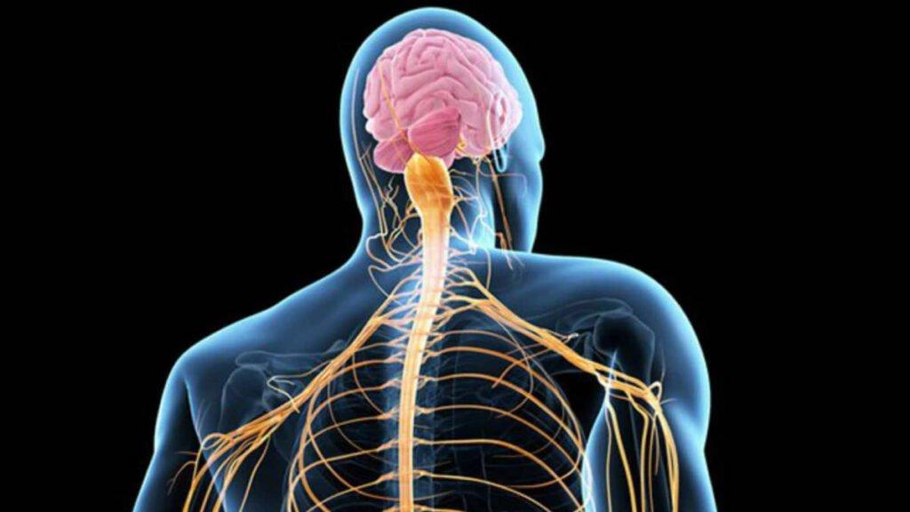 Enfermedad ELA neurología